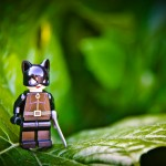 Lego Catwoman standing on an oversized leaf.