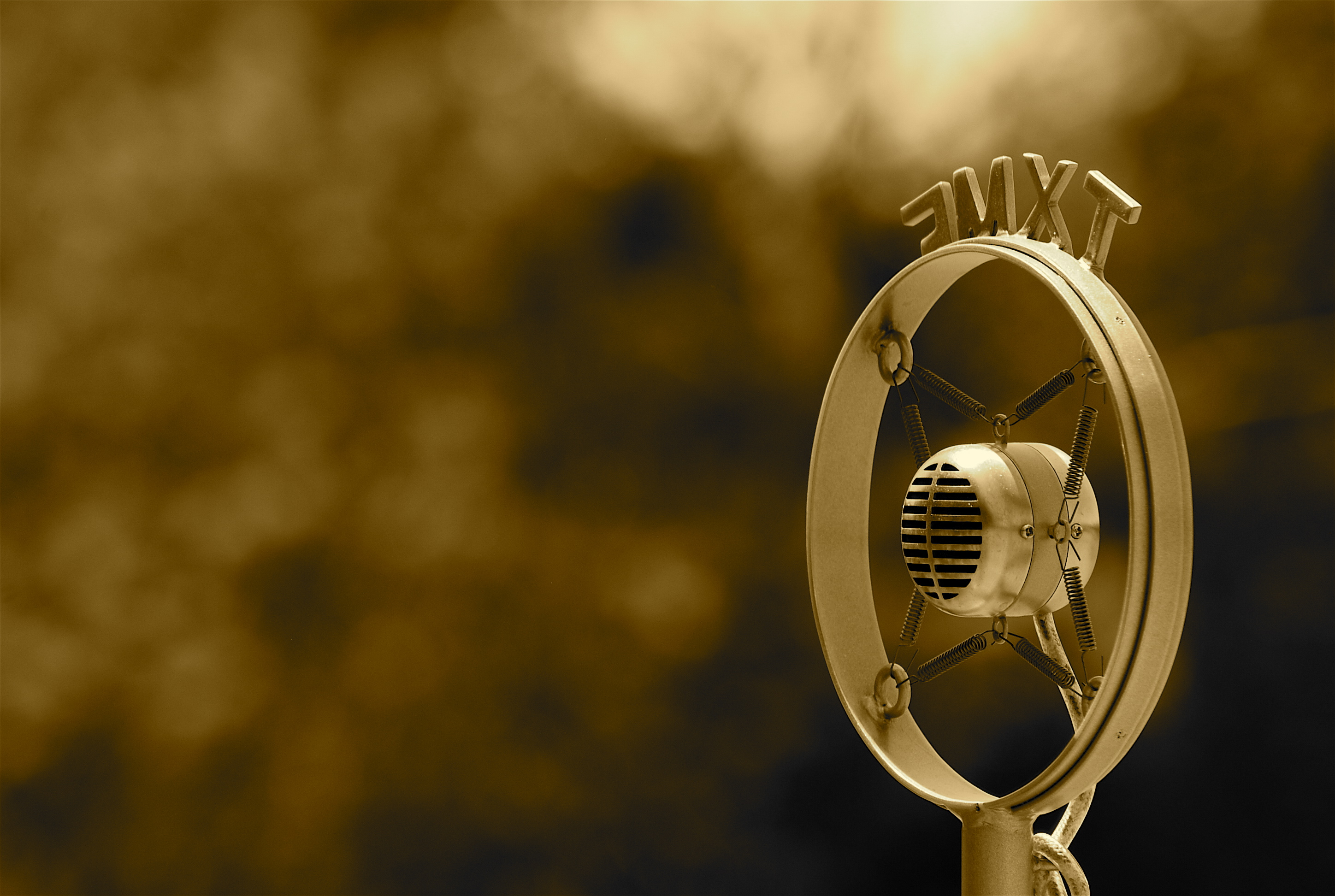 Old Fashioned Microphone.